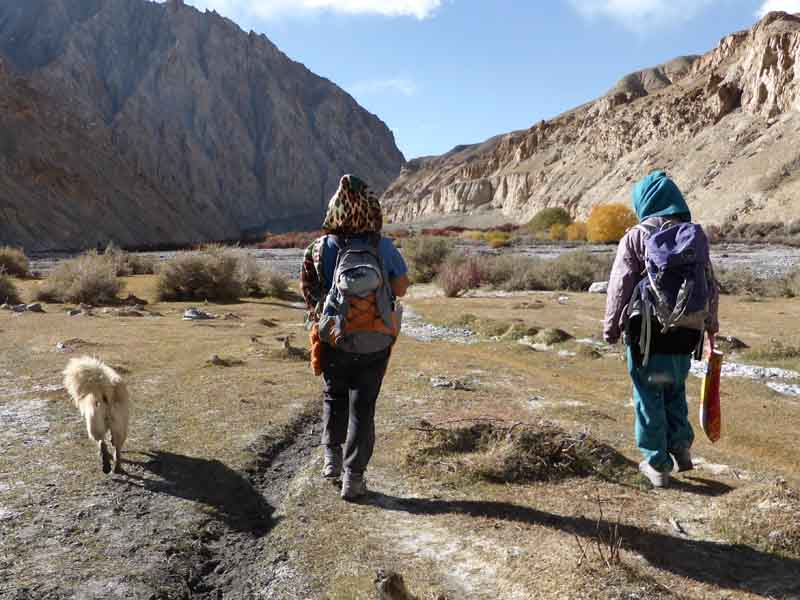 SIlber Sherpa Teaser