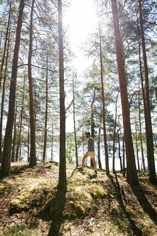 Plötzlich ist man ganz allein unter Bäumen; Foto: Jonas Ingmann