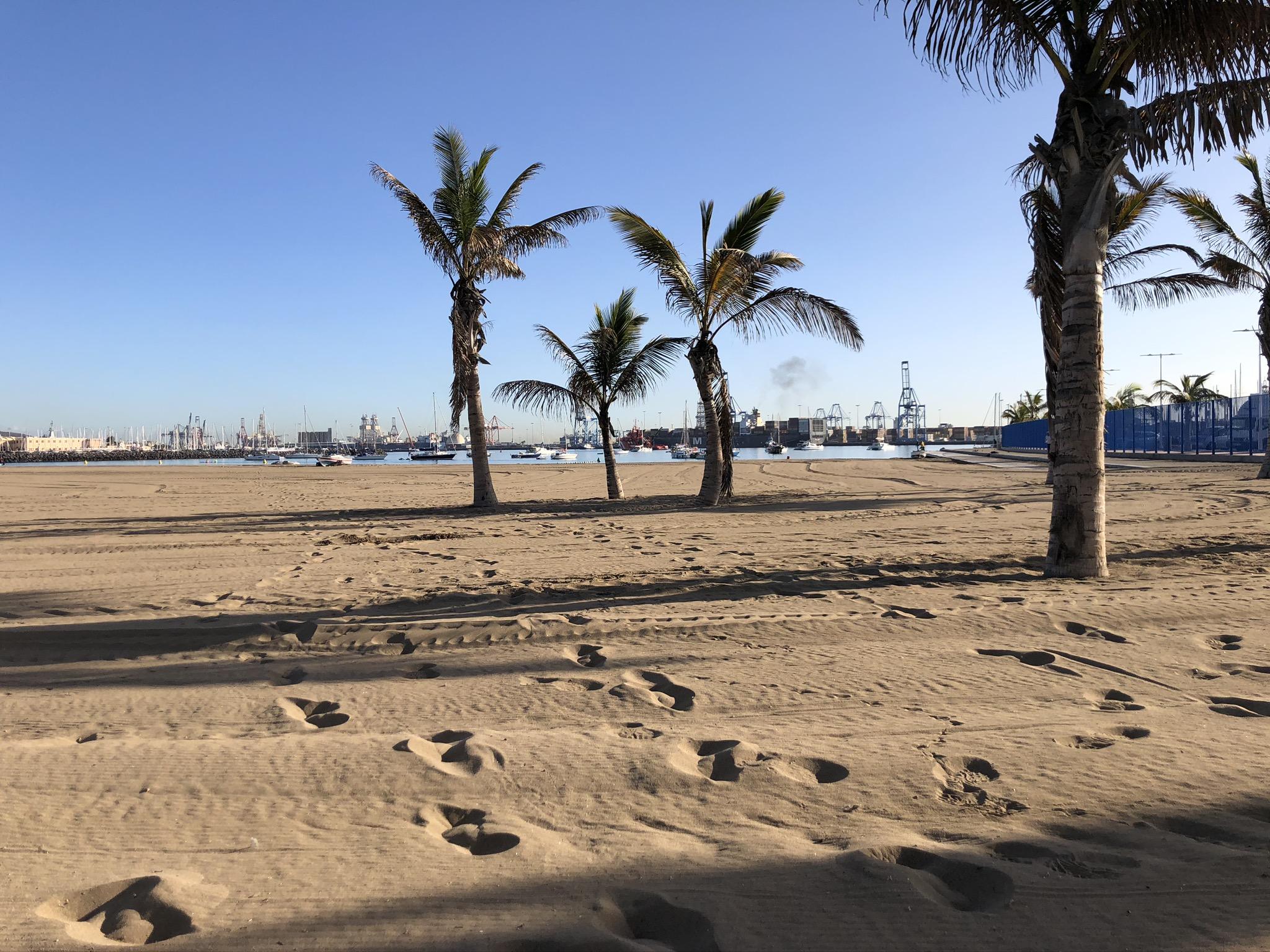 Im Hafen von Las Palmas will Malte ein Segelschiff finden, das ihn über den Atlantischen Ozean bringt, nach Brasilien oder in die Karibik. Doch wann wird sein Schiff kommen? (Foto: Paul Hildebrandt)