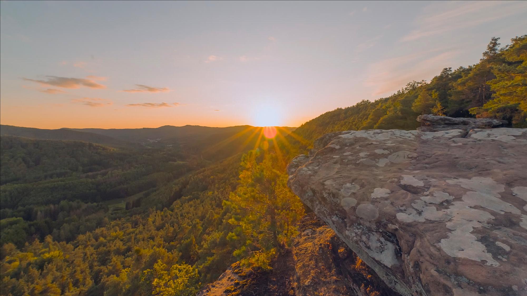 """Der Pfälzerwald zählt zu den am dünnsten besiedelten Regionen Deutschlands: """"Dieser Film (…) nimmt einen mit auf eine perfekt komponierte filmische Reise, an deren Ende man selbst sofort (…) aufbrechen will, um ihn mit eigenen Augen zu entdecken."""" (Foto: K22 Film/Ricardo Garzon Mesa)"""