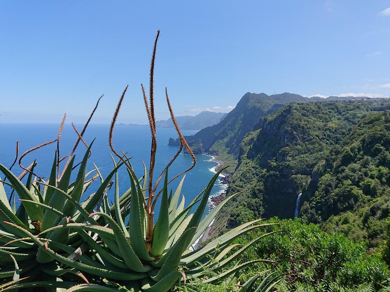 © Barbara Blunschi - Madeira - Blick über die imposante Steilküste bei Santana.