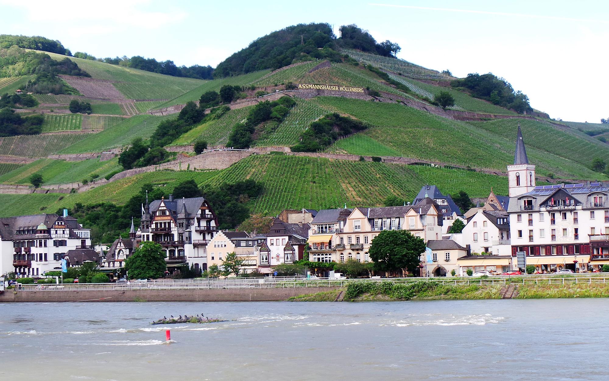 Der Rhein bei Assmannshausen. Aufgenommen von Lilo Solcher.